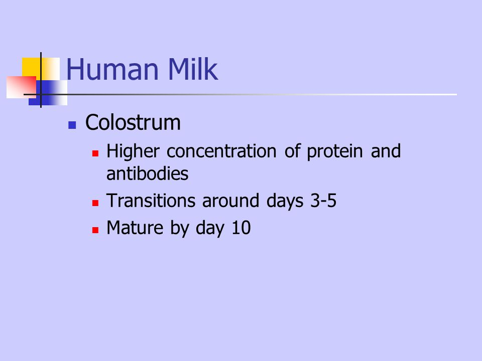 Human Milk Colostrum Higher concentration of protein and antibodies Transitions around days 3-5 Mature by day 10