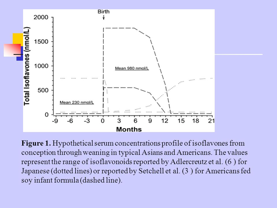Figure 1. Hypothetical serum concentrations profile of isoflavones from conception through weaning in typical Asians and Americans. The values represe
