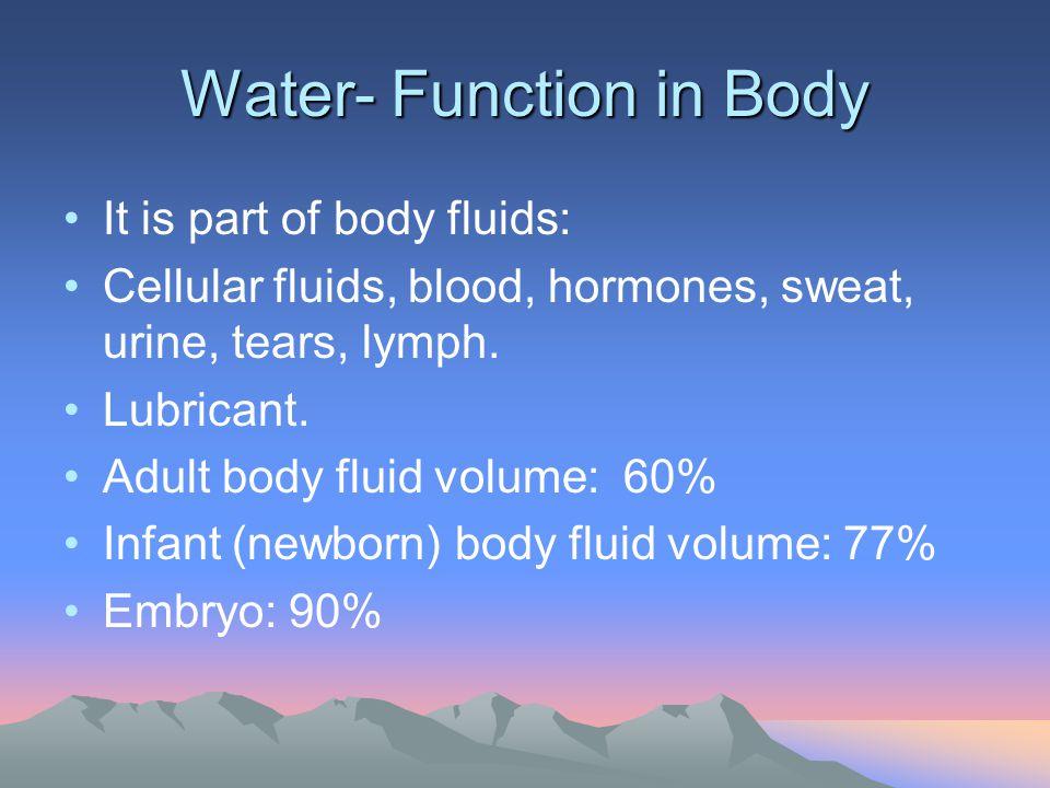 Water- Function in Body It is part of body fluids: Cellular fluids, blood, hormones, sweat, urine, tears, lymph. Lubricant. Adult body fluid volume: 6