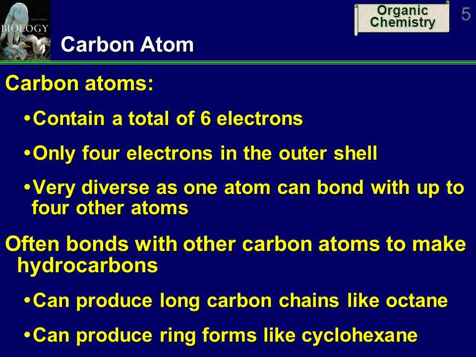 Organic Chemistry 5 Carbon Atom Carbon atoms: Contain a total of 6 electrons Contain a total of 6 electrons Only four electrons in the outer shell Onl