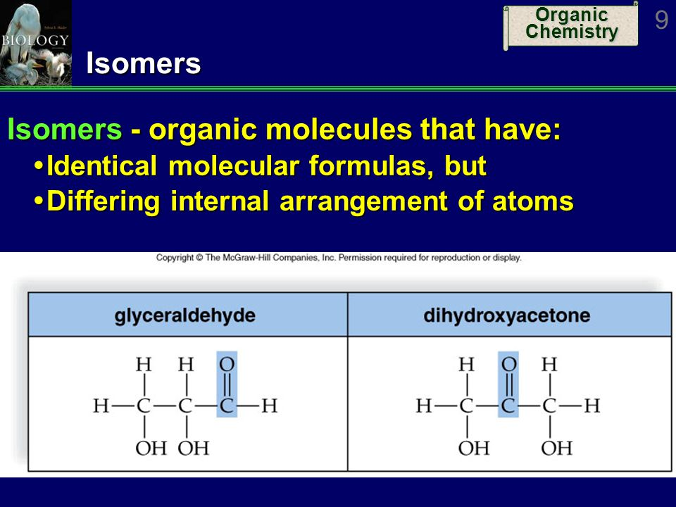 Organic Chemistry 10Macromolecules Some molecules called macromolecules because of their large size Usually consist of many repeating units Resulting molecule is a polymer (many parts) Resulting molecule is a polymer (many parts) Repeating units are called monomers Repeating units are called monomers Some examples: NucleotideDNA, RNA Nucleic Acids Amino acidPolypeptide Proteins MonosaccharidePolysaccharide Carbohydrates Glycerol & fatty acidsFat Lipids Subunit(s)ExampleCategory