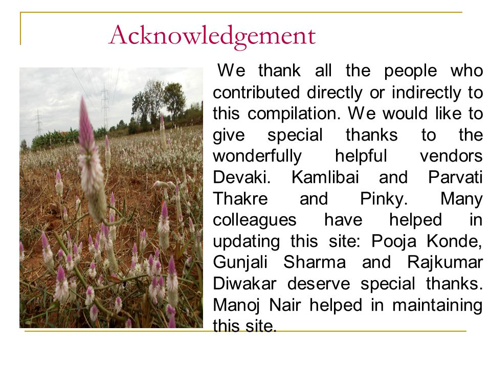 Acknowledgement We thank all the people who contributed directly or indirectly to this compilation. We would like to give special thanks to the wonder