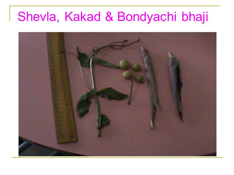 Shevla, Kakad & Bondyachi bhaji