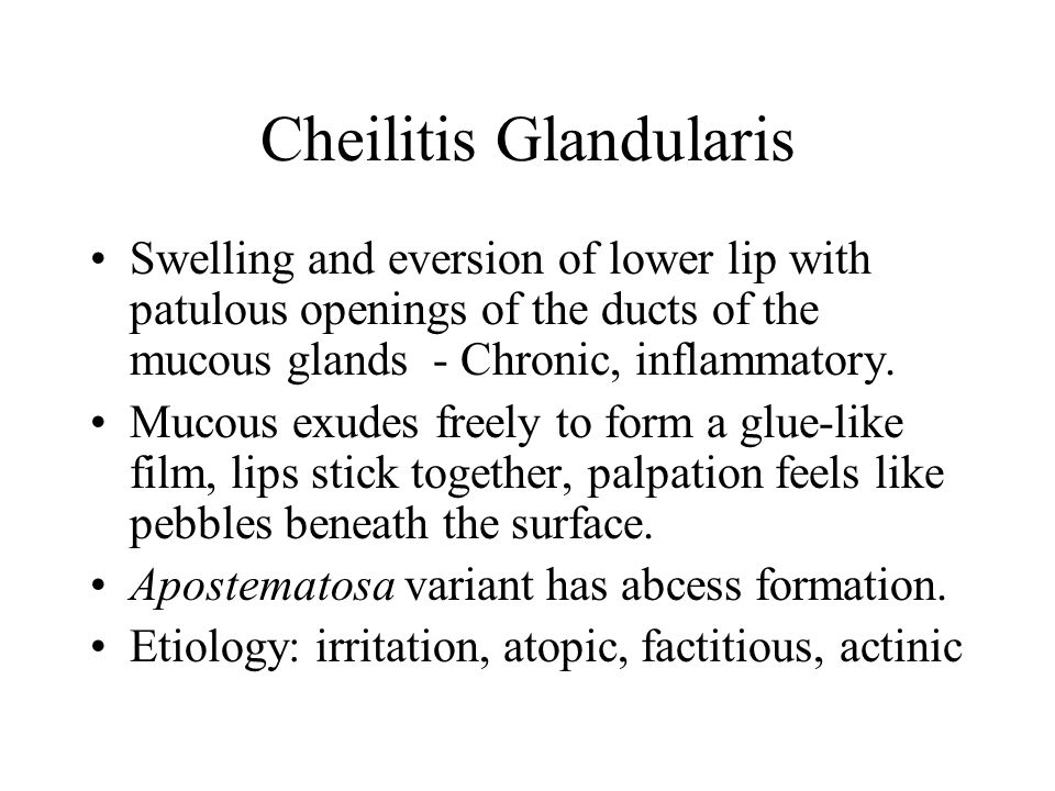Cheilitis Glandularis Swelling and eversion of lower lip with patulous openings of the ducts of the mucous glands - Chronic, inflammatory. Mucous exud