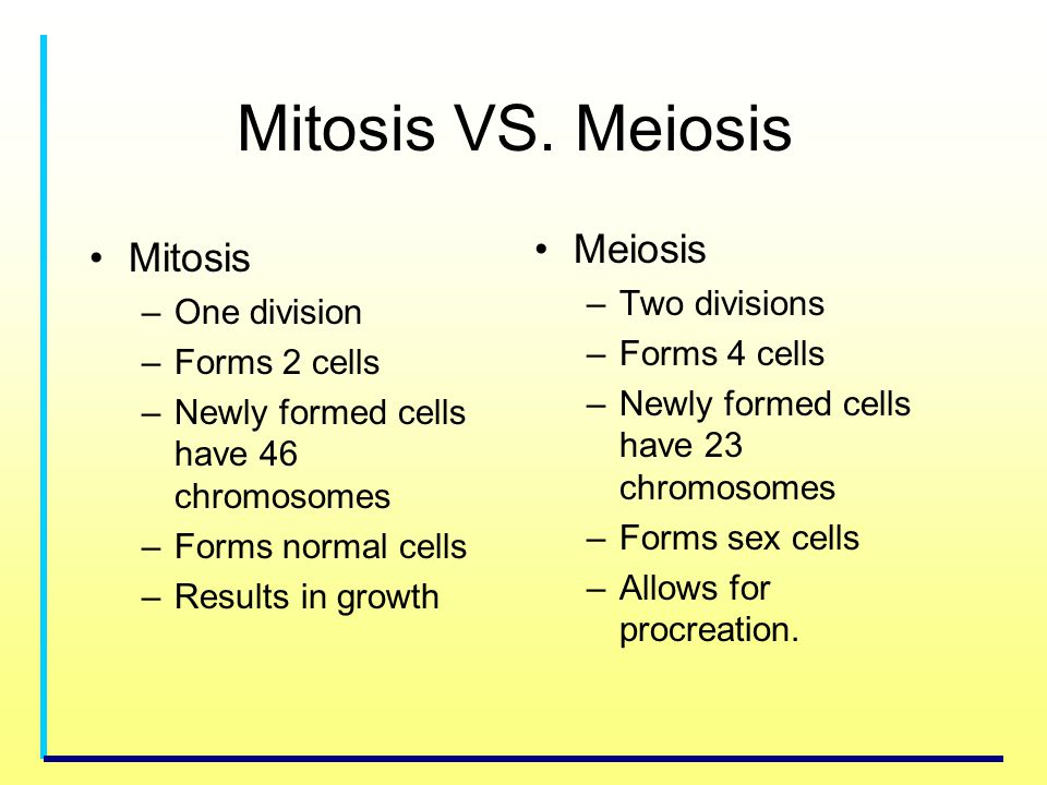 Mitosis VS. Meiosis Mitosis –One division –Forms 2 cells –Newly formed cells have 46 chromosomes –Forms normal cells –Results in growth Meiosis –Two d