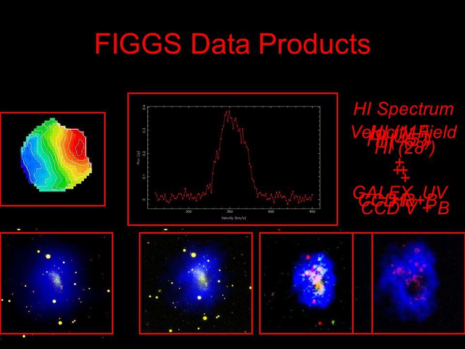 FIGGS Data Products HI Spectrum Velocity Field HI (45) + CCD R+B HI (28) + CCD V + B HI (11) + GALEX UV HI (5) + H