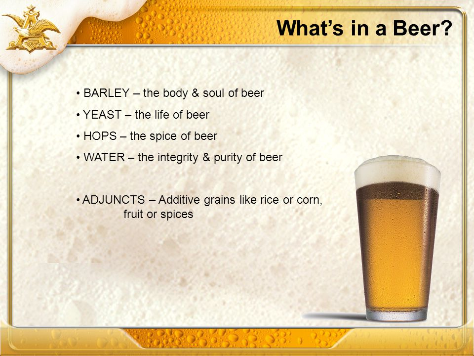 Whats in a Beer? BARLEY – the body & soul of beer YEAST – the life of beer HOPS – the spice of beer WATER – the integrity & purity of beer ADJUNCTS –