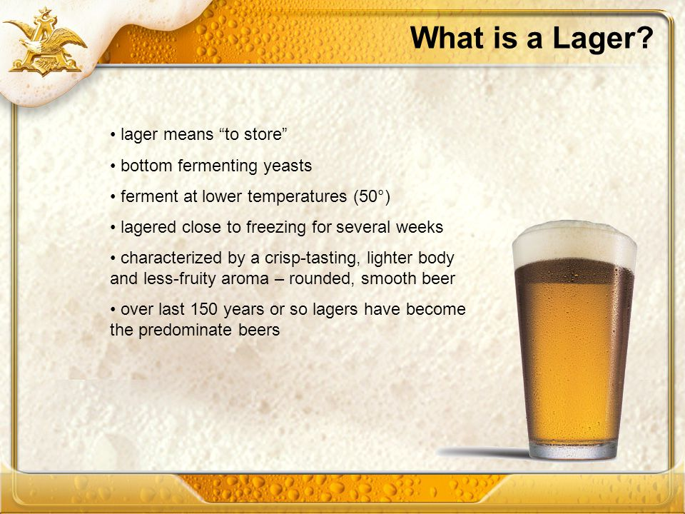 What is a Lager? lager means to store bottom fermenting yeasts ferment at lower temperatures (50°) lagered close to freezing for several weeks charact