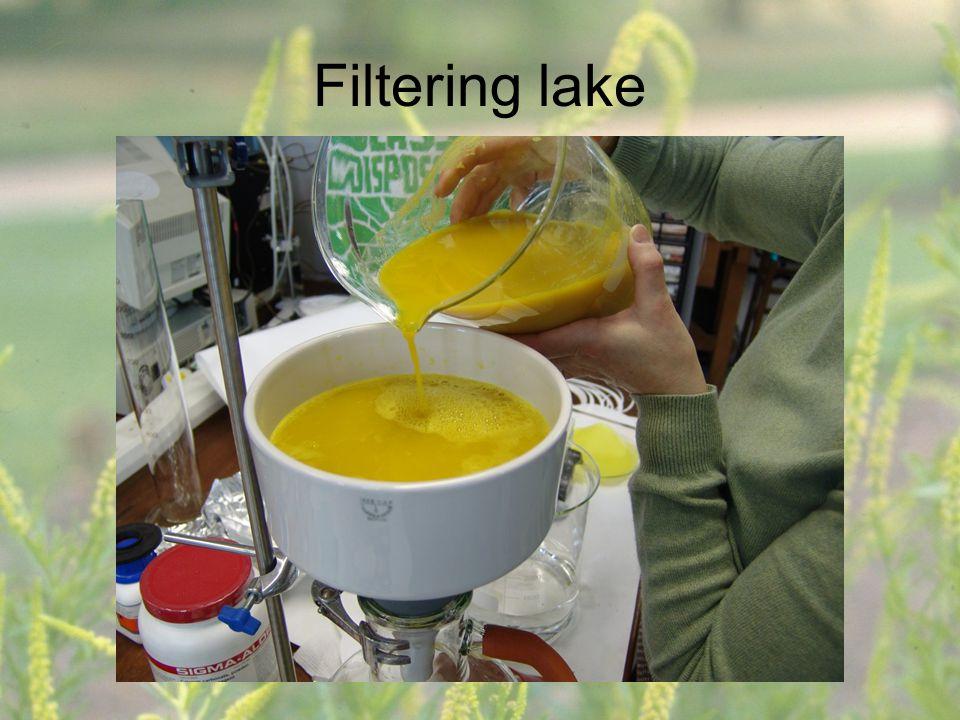 Filtering lake