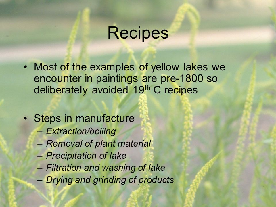Recipes Most of the examples of yellow lakes we encounter in paintings are pre-1800 so deliberately avoided 19 th C recipes Steps in manufacture –Extr