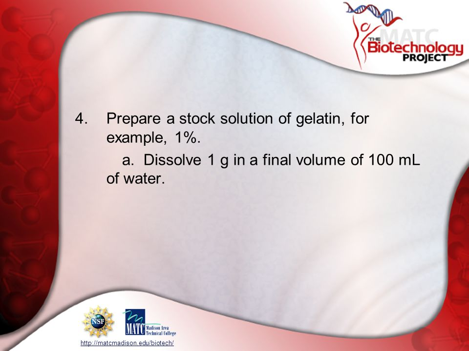 http://matcmadison.edu/biotech/ 4.Prepare a stock solution of gelatin, for example, 1%. a. Dissolve 1 g in a final volume of 100 mL of water.
