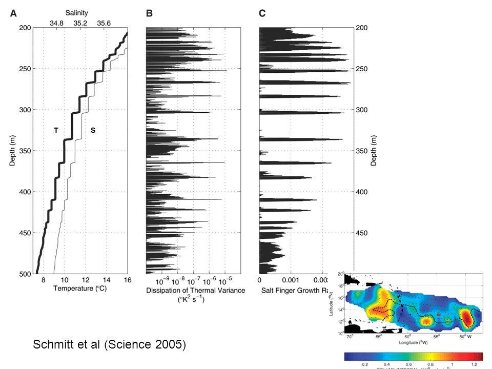 Schmitt et al (Science 2005)