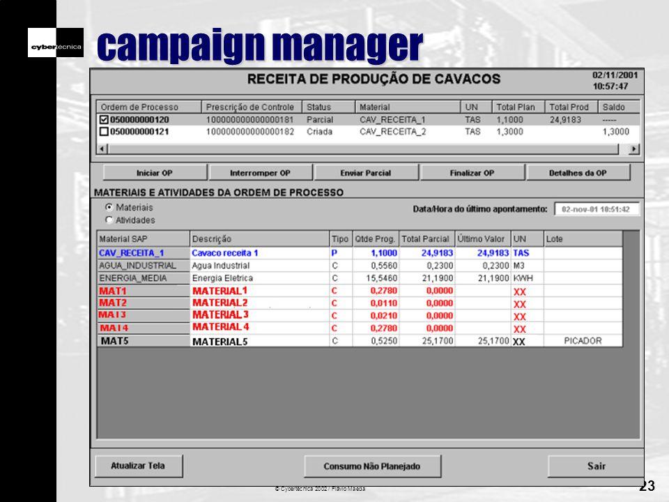© Cybertécnica 2002 / Flávio Maeda 23 campaign manager