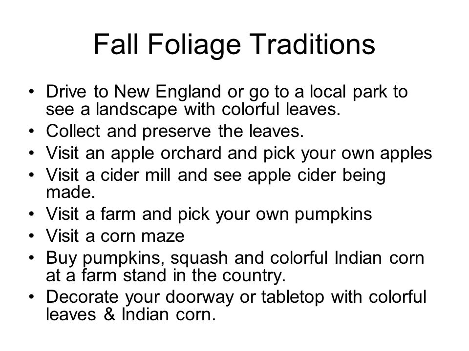 Fall Foliage Traditions Drive to New England or go to a local park to see a landscape with colorful leaves. Collect and preserve the leaves. Visit an