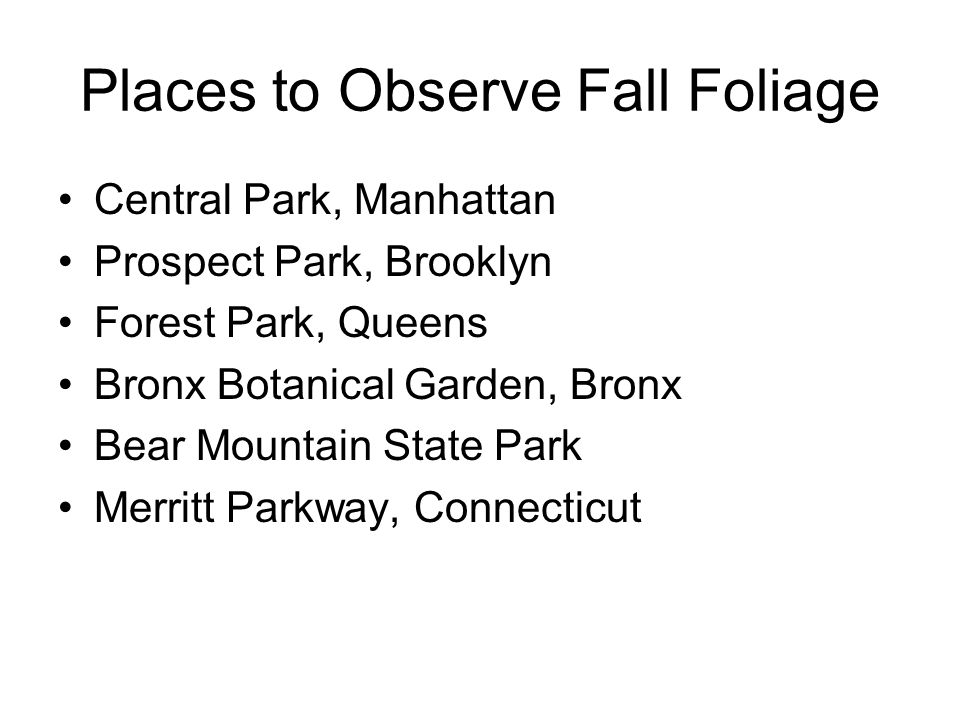 Places to Observe Fall Foliage Central Park, Manhattan Prospect Park, Brooklyn Forest Park, Queens Bronx Botanical Garden, Bronx Bear Mountain State P