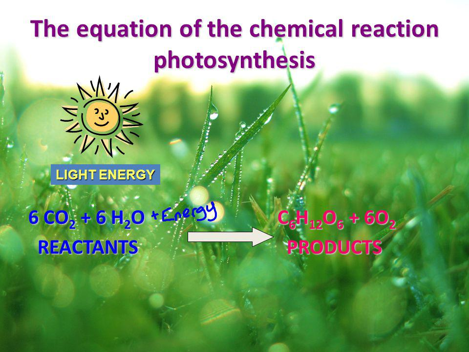 The equation of the chemical reaction photosynthesis 6 CO 2 + 6 H 2 O C 6 H 12 O 6 + 6O 2 REACTANTS PRODUCTS REACTANTS PRODUCTS LIGHT ENERGY