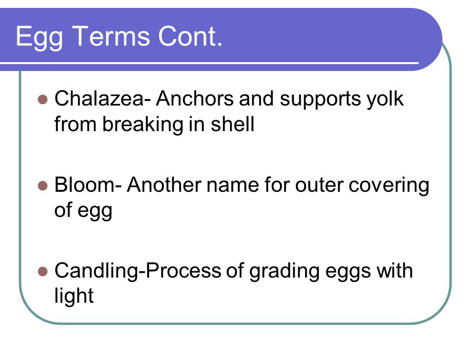 Egg Terms Cont. Chalazea- Anchors and supports yolk from breaking in shell Bloom- Another name for outer covering of egg Candling-Process of grading e