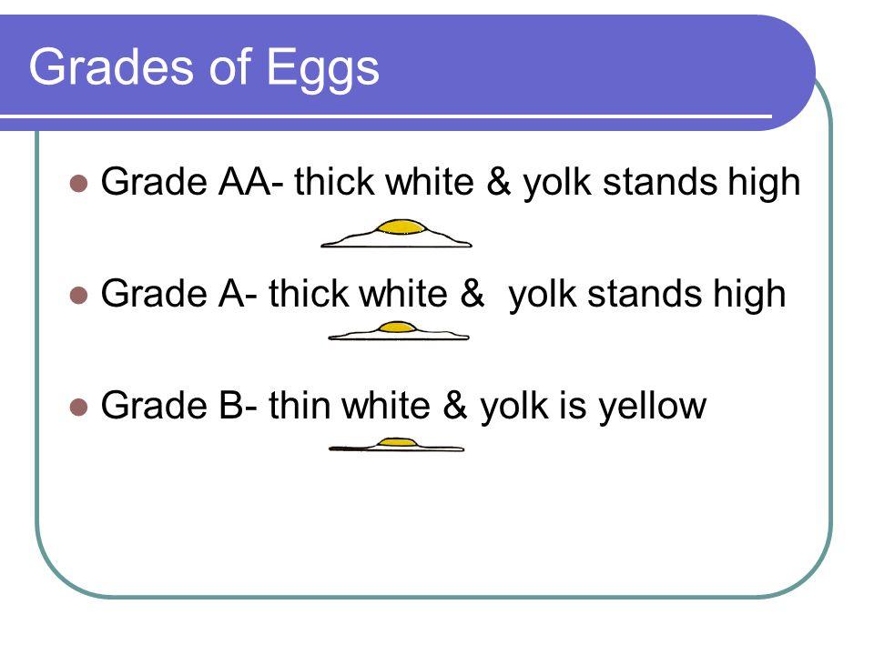 Grades of Eggs Grade AA- thick white & yolk stands high Grade A- thick white & yolk stands high Grade B- thin white & yolk is yellow