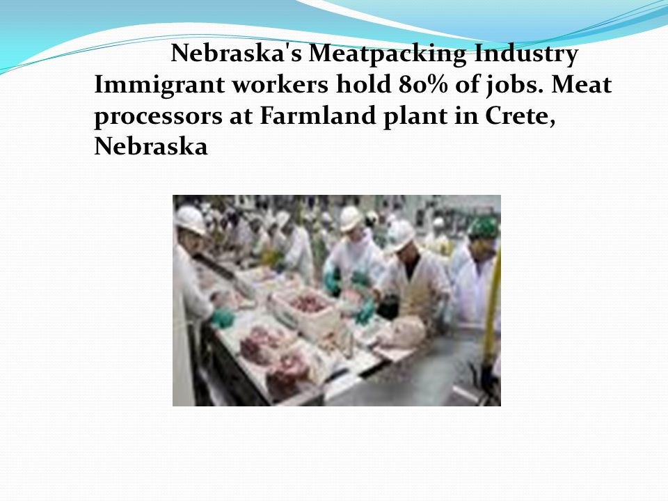 Nebraska s Meatpacking Industry Immigrant workers hold 80% of jobs.