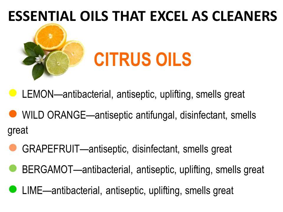 ESSENTIAL OILS THAT EXCEL AS CLEANERS CITRUS OILS LEMONantibacterial, antiseptic, uplifting, smells great WILD ORANGEantiseptic antifungal, disinfectant, smells great GRAPEFRUITantiseptic, disinfectant, smells great BERGAMOTantibacterial, antiseptic, uplifting, smells great LIMEantibacterial, antiseptic, uplifting, smells great