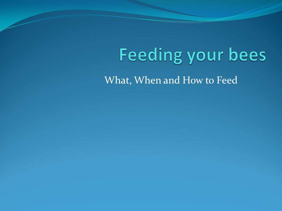 What, When and How to Feed