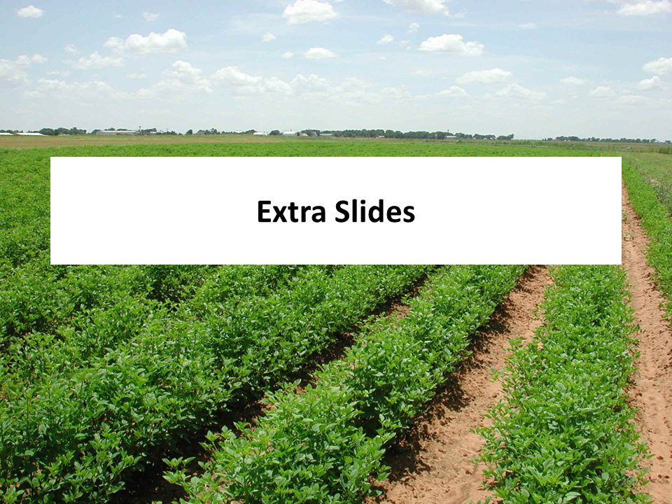 Health Effects Division Office of Pesticide Programs Extra Slides 26
