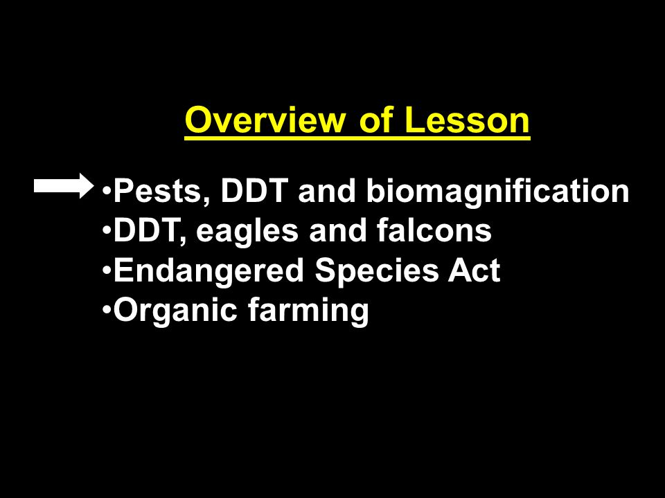 Pests, DDT and biomagnification DDT, eagles and falcons Endangered Species Act Organic farming Overview of Lesson