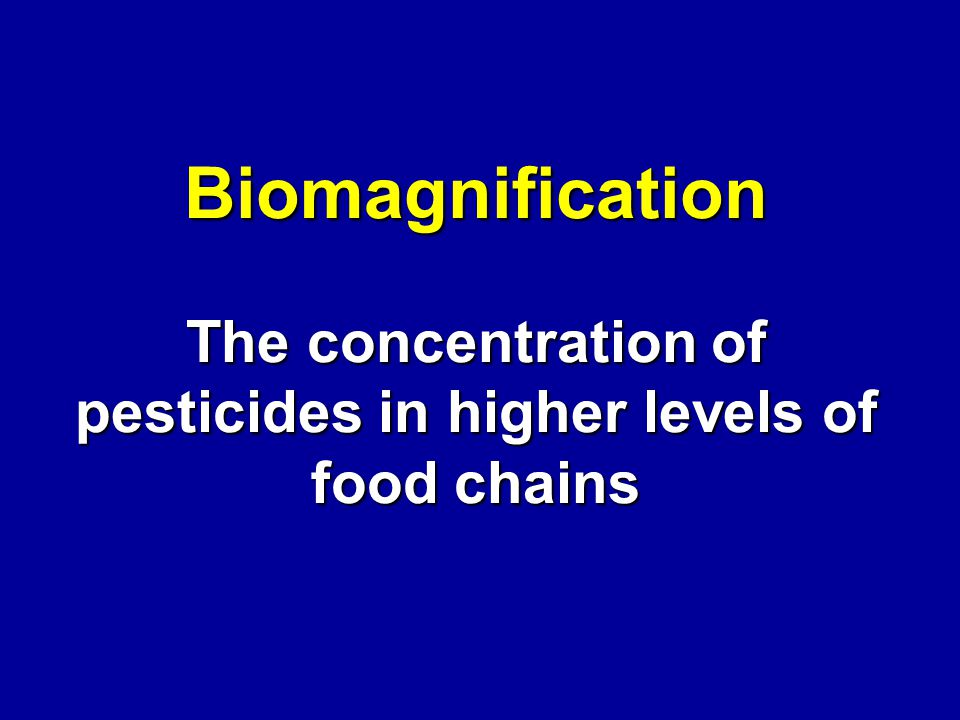 Biomagnification The concentration of pesticides in higher levels of food chains