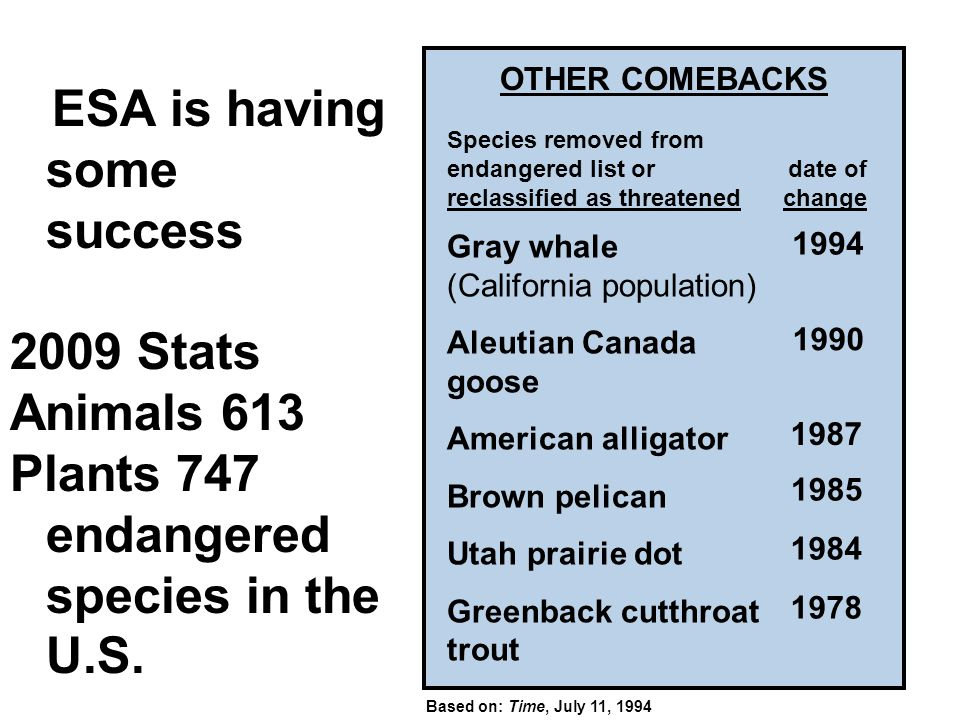 OTHER COMEBACKS ESA is having some success 2009 Stats Animals 613 Plants 747 endangered species in the U.S. Gray whale (California population) Aleutia