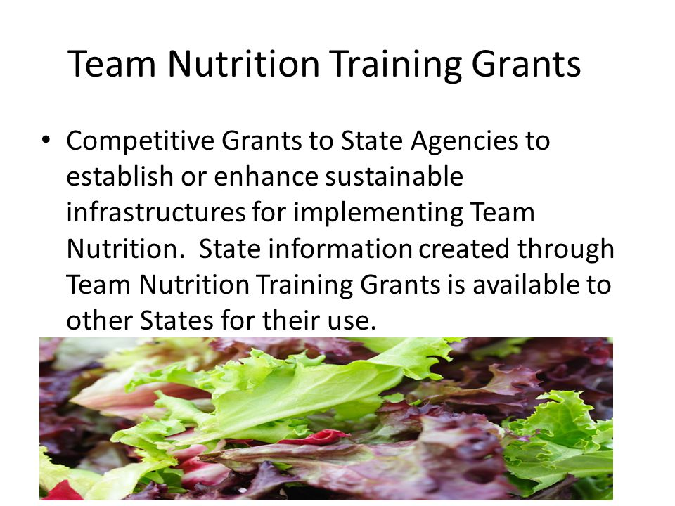 Team Nutrition Training Grants Competitive Grants to State Agencies to establish or enhance sustainable infrastructures for implementing Team Nutritio