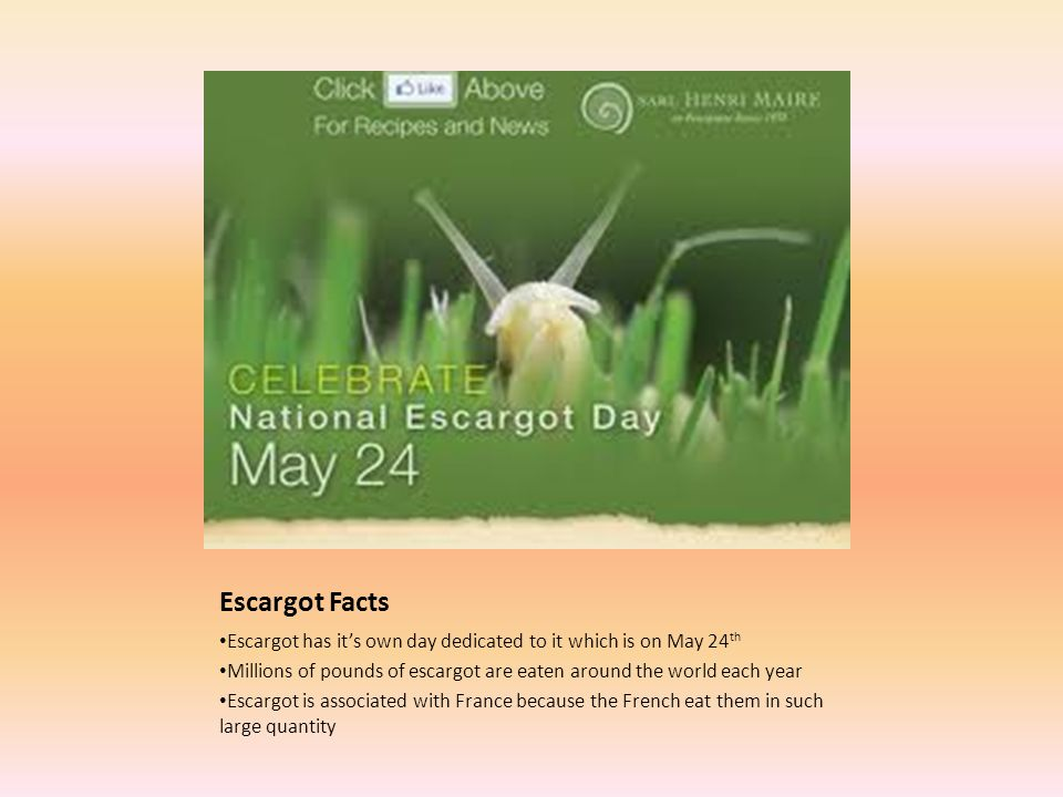 Escargot Facts Escargot has its own day dedicated to it which is on May 24 th Millions of pounds of escargot are eaten around the world each year Escargot is associated with France because the French eat them in such large quantity
