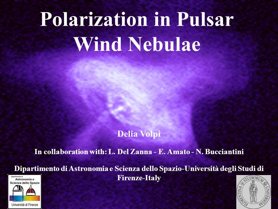Polarization in Pulsar Wind Nebulae Delia Volpi In collaboration with: L. Del Zanna - E. Amato - N. Bucciantini Dipartimento di Astronomia e Scienza d