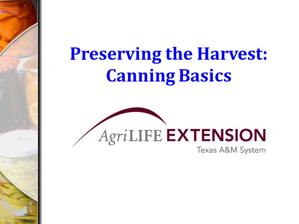 Preserving the Harvest: Canning Basics