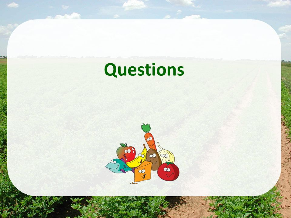 Health Effects Division Office of Pesticide Programs 24 Questions