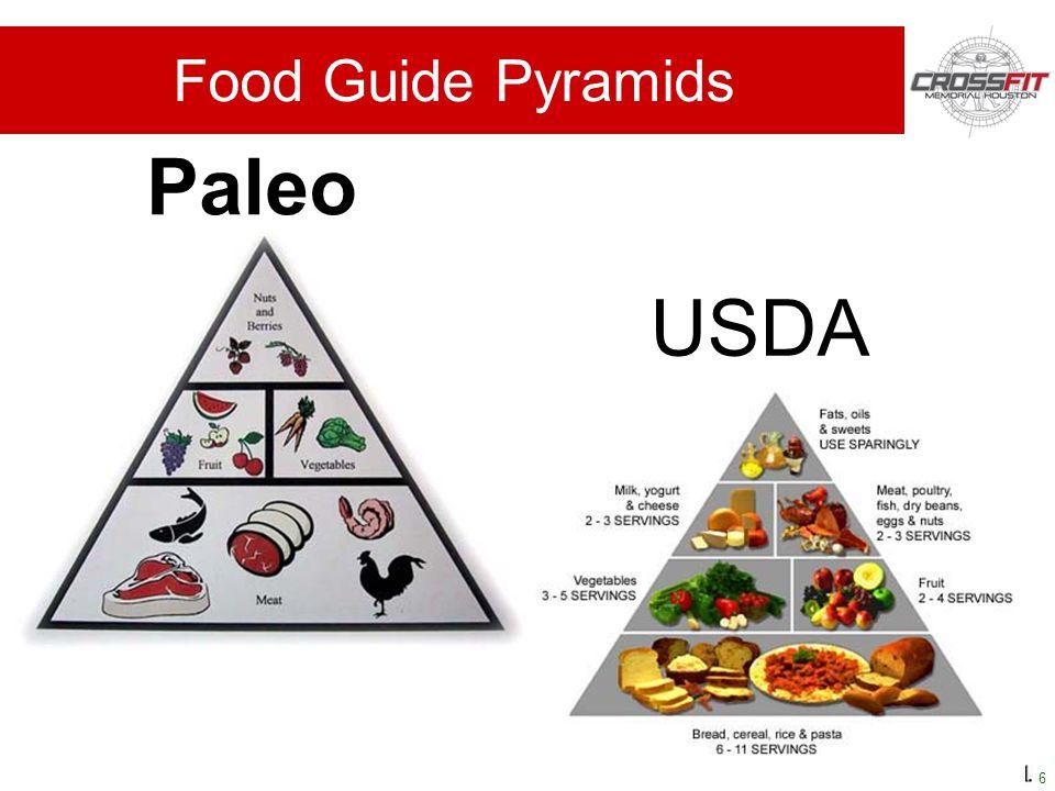 6 Paleo USDA Food Guide Pyramids