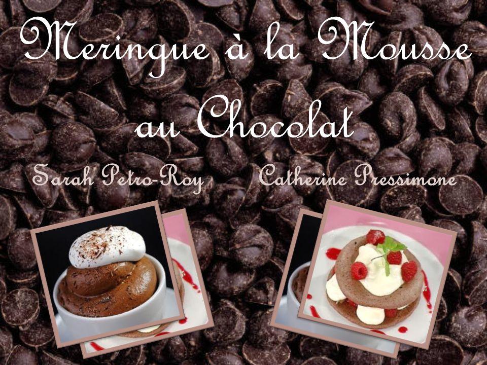 Meringue à la Mousse au Chocolat Sarah Petro-Roy Catherine Pressimone