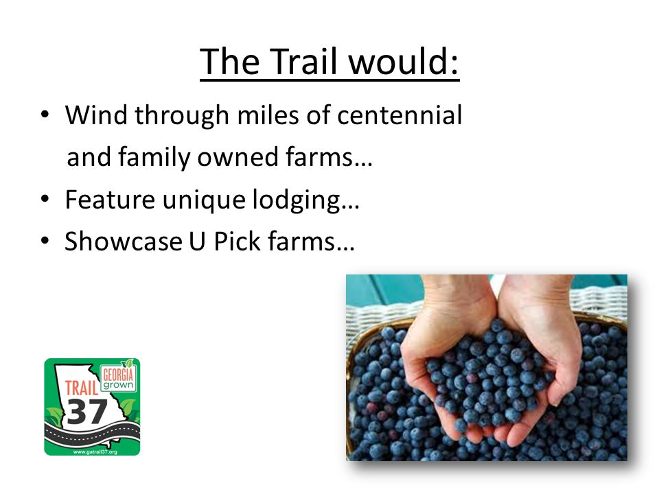 Wind through miles of centennial and family owned farms… Feature unique lodging… Showcase U Pick farms… The Trail would: