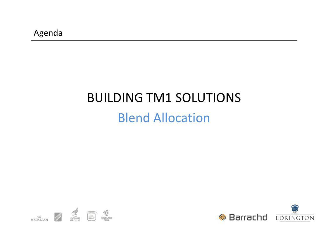 Agenda BUILDING TM1 SOLUTIONS Blend Allocation