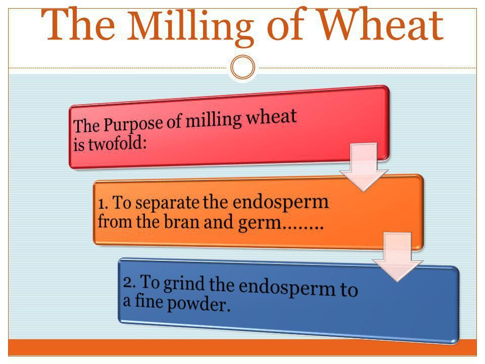 Composition of Wheat Kernel: 3 Parts Hard outer covering of kernel. Present in whole wheat flour and high in dietary fiber. Bran Part of the kernel th
