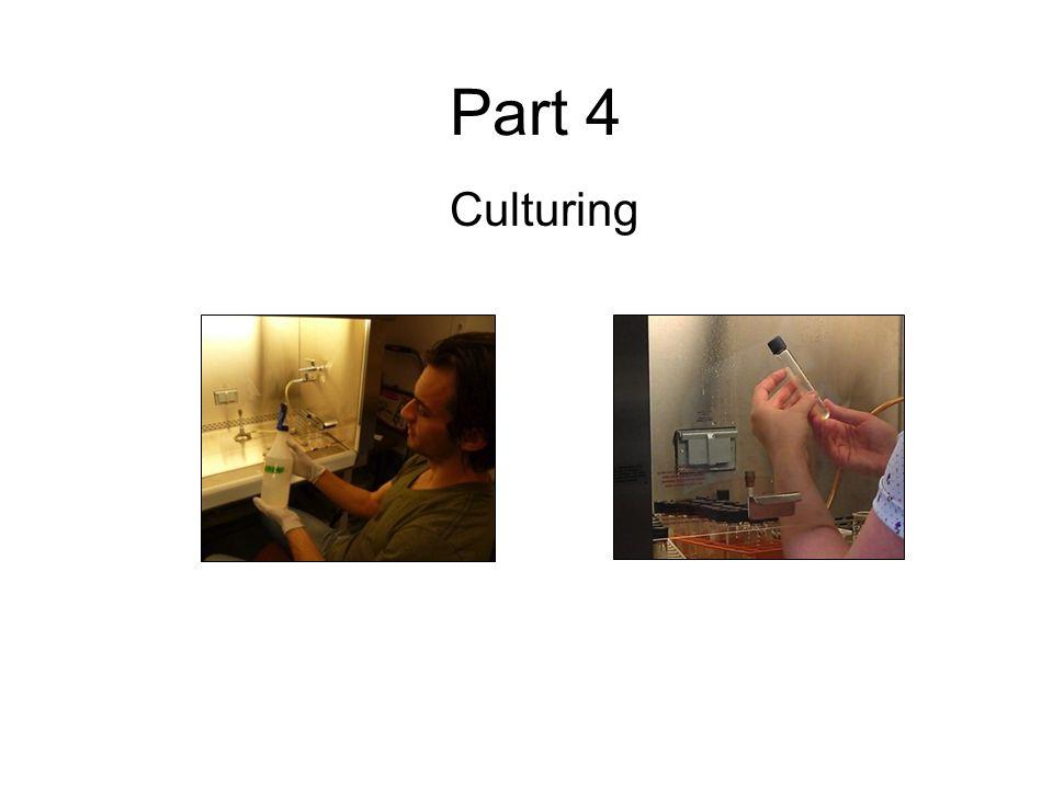 Part 4 Culturing