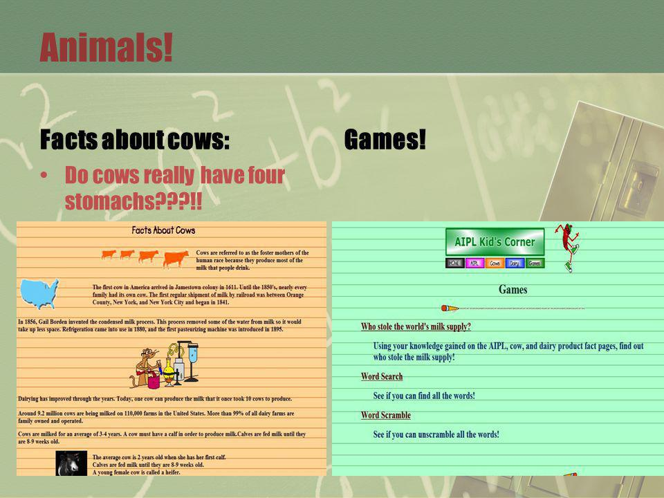 Animals! Facts about cows: Do cows really have four stomachs !! Games!