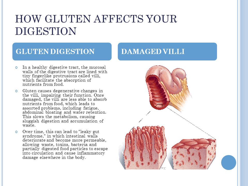 HOW GLUTEN AFFECTS YOUR DIGESTION In a healthy digestive tract, the mucosal walls of the digestive tract are lined with tiny fingerlike protrusions called villi, which facilitate the absorption of nutrients from food.