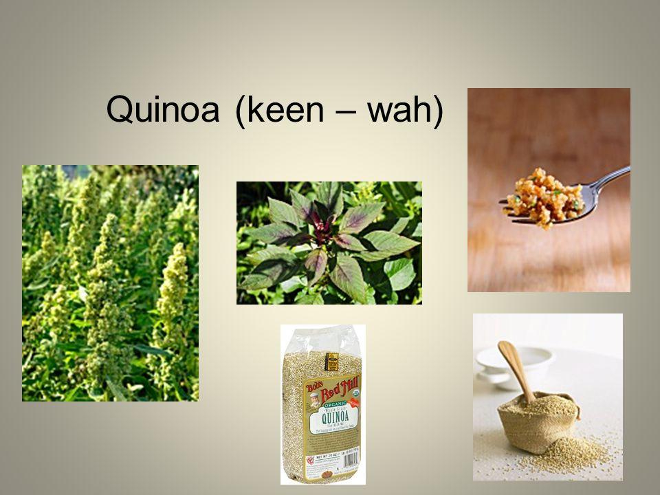 Quinoa (keen – wah)
