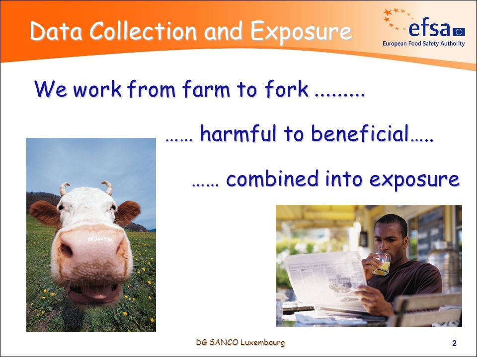 DG SANCO Luxembourg 2 Data Collection and Exposure We work from farm to fork ……… …… harmful to beneficial…..