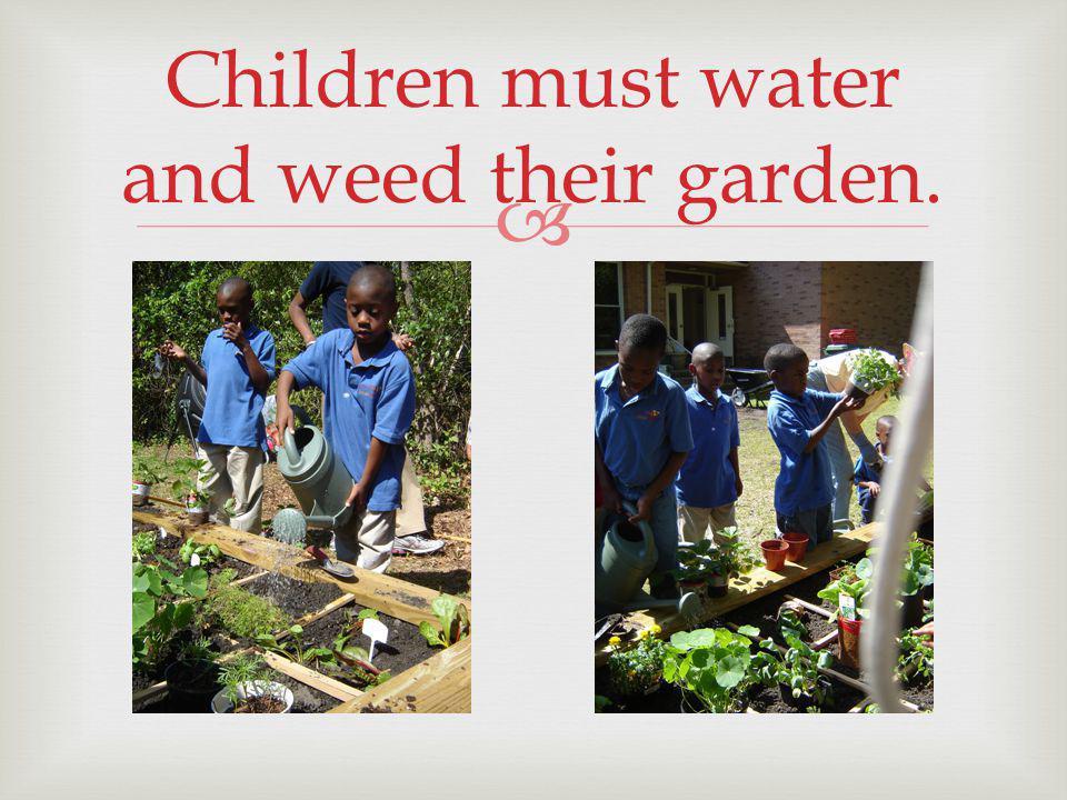 Children must water and weed their garden.