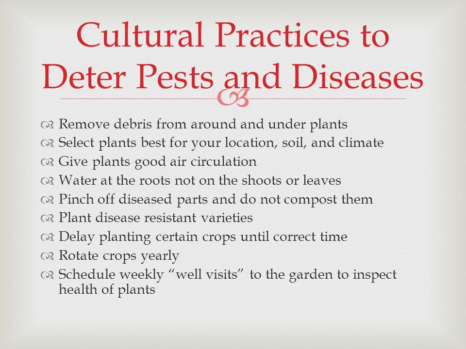 Remove debris from around and under plants Select plants best for your location, soil, and climate Give plants good air circulation Water at the roots