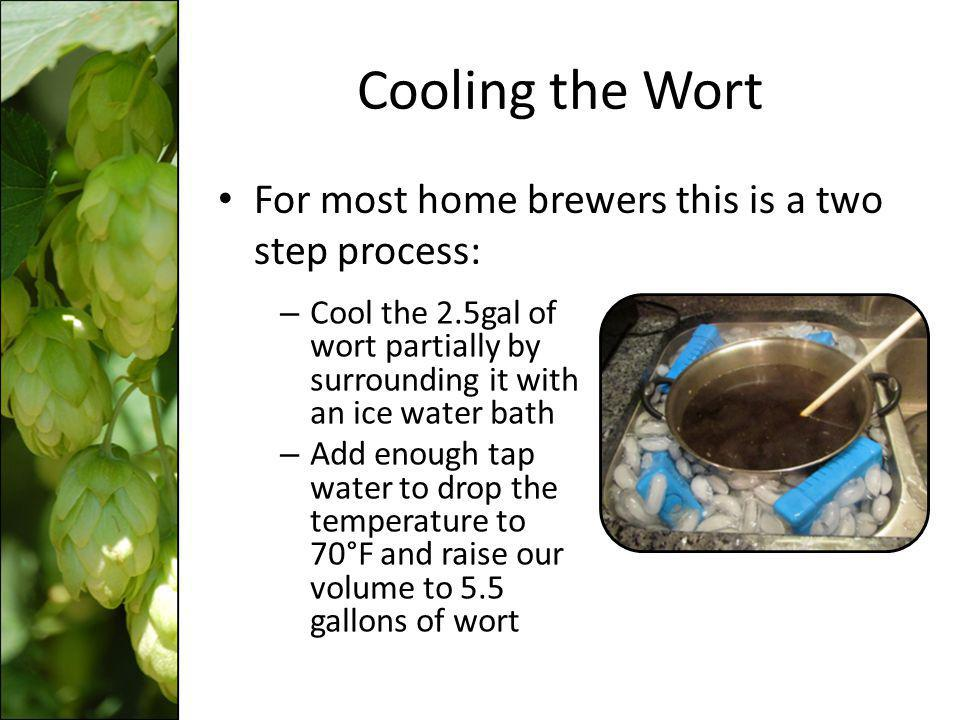 Cooling the Boiling Wort What temperature should the 2.5 gallons of wort reach to mix with 3.0 gallons of tap water at 48 0 F in order to obtain 5.5 gallons of wort mixture at 70 0 F.
