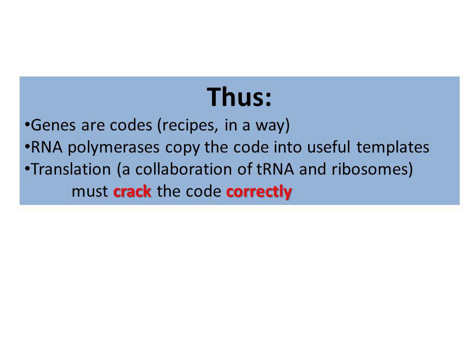 Thus: Genes are codes (recipes, in a way) RNA polymerases copy the code into useful templates crack correctly Translation (a collaboration of tRNA and