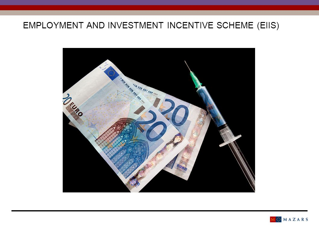 EMPLOYMENT AND INVESTMENT INCENTIVE SCHEME (EIIS)