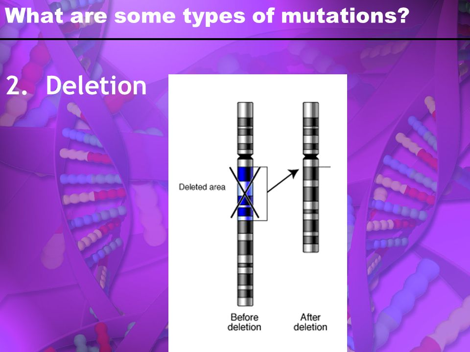What are some types of mutations? 2. Deletion